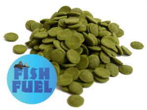 Algae Wafers 50g - 5kg, Spirulina Wafers, Aquarium Food, Fish Fuel, Catfish