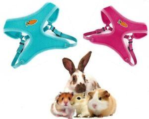 Ancol Small n Furry Walk n Vest Harness Lead Set Rabbits Ferrets Rats Guinea Pig