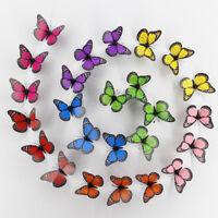 Eg _ Hk- 10pcs 3D PVC Schmetterling Wandkunst Aufkleber Selbstklebend Zimmer