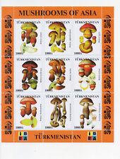 Turkmenistan - schöne Lot-3 **