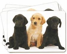 Labrador Puppies Picture Placemats in Gift Box, AD-L88P