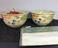 2 Gibson Everyday Bowls Floral Art Pottery 28 Oz Cereal or Centerpieces +Napkins