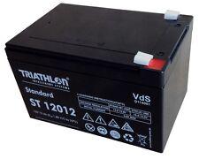 Triathlon Akku/Batterie 12 V / 12 Ah AGM Blockbatterie Long-Life für HAAGA 677