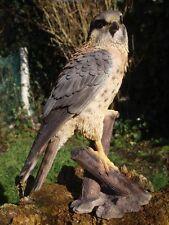 Turmfalke lebensecht Adler HOTANT Dekoration Vogelfigur Figur Falke Greifvögel