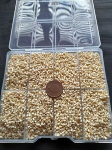 job lot 200 gram of 3mm cream glass bugle  beads & storage box New