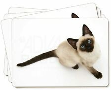 Siamese Cat Picture Placemats in Gift Box, AC-66P