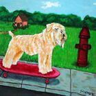 Soft Coated Wheaten Terrier skateboarding dog art tile coaster gift gifts modern