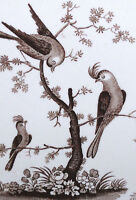 Framed Print – Traditional Japanese Artwork with Birds (Asian Oriental Picture)