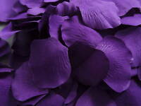 100 PURPLE SILK PETALS/LARGE QUALITY PIECES/ CONFETTI wedding table decoration