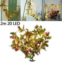 1pcs x 20LED Ivy Leaf Rose Flower Garland Fairy String Lights Garden Lamp W2E1