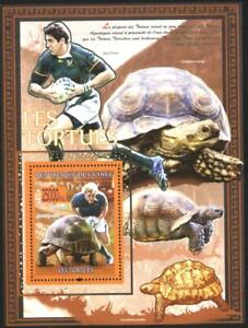 Mint S/S  Fauna Turtles  Sport  Rugby  2008  from Guinea  avdpz