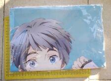 Taito Prizes Free! Iwatobi Swim Club Pillow Cover Part 2 # Nitori Aiichiro