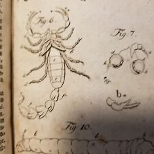 BRUNNICH 1764 ENTOMOLOGIA SISTENS INSECTORUM -EXTREMELY RARE ENTOMOLOGY INSECTS
