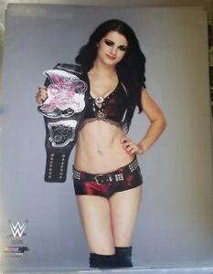 Paige WWE Diva 8x10 photo WWE Divas title Championship Belt Total Divas E! RARE