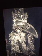 "Edward Curtis ""Kwahwumhi "" Koskimo  Native American photography 35mm Art slide"