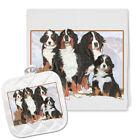 Bernese Mountain Dog Kitchen Dish Towel and Pot Holder Gift Set