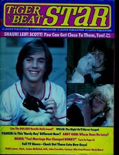 leif garrett shaun cassidy scott baioandy gibb and moure  lots of photos