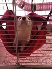 Hammock Bed-ECO-FRIENDLY-Handmade-Rabbit-Ferret-Rat-Degu-Hamster-Cat-Pet-Guinea