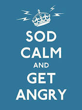 Sod Calm and Get Angry: resigned advice for hard times by Ebury Publishing (Hardback, 2010)
