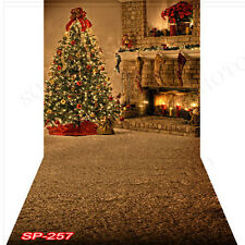 Christmas 10'x20' Computer-painted(CP) Scenic Vinyl Background Backdrop SP257B88