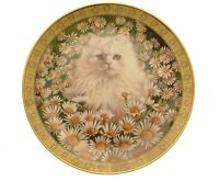 Cats Among The Flowers Mr Jones In Daisies Lesley Anne Ivory GB284