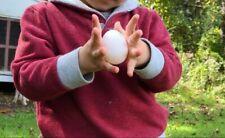 6+ Fertile hatching chicken eggs (Leghorn/Columbian Wyandotte Mix)