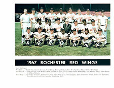 1967 ROCHESTER RED WINGS TEAM 8X10  PHOTO BRABENDER NEW YORK BASEBALL