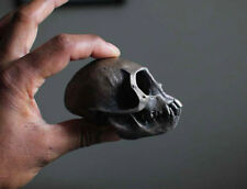 bronze resin cast monkey skull - taxidermy - oddity - natural curiosity