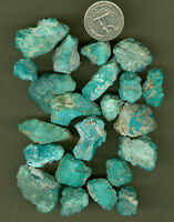 129 GRAMS OF NATURAL FOX TURQUOISE ROUGH, GOOD BLUE TURQUOISE ROUGH MATERIAL