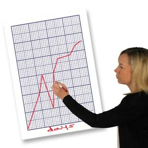 Eduk8 Teachers Dry Erase Graph Board - Kids Children's Educational Toys