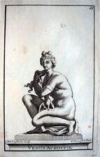 SITZENDE VENUS CROUCHING VÉNUS ACCROUPIE VENERE THOMASSIN 1723 MYTHOLOGIE