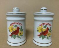 Vintage Kentucky Salt and Pepper Shakers with Cardinals