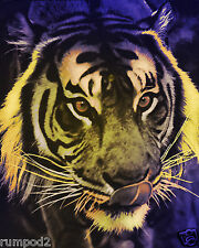 Tiger/ Poster/PsychedelicTiger/16x20 in/Wild Animals/Africa/Cat Poster