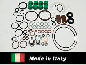 Roosa Master / Stanadyne seal kit 24371 for DB/JDB/DC Diesel Injection Pumps