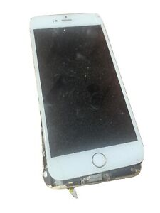 Apple iPhone 6 Plus (A1522) 32GB - Gold (T-Mobile)  Clean IMEI