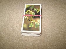 65 BROOKE BOND CARDS Woodland Wildlife - not a full set duplicates gap fillers