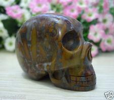 "2.04""Natural Black Zebra Jasper Carved Human Skull Crystal Healing Reiki #88H01"