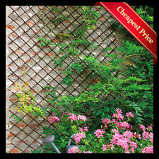 EXPANDING WILLOW GARDEN TRELLIS WALL FENCE PANEL PLANT CLIMB SUPPORT 6FT x 2FT