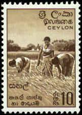 Ceylon Scott #356 SG #465 Mint Hinged