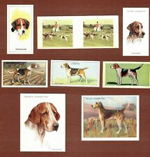 English Foxhound dog cigarette trade cards set of 8