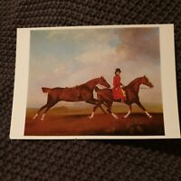 William Anderson with Prince of Wales' Horses - Stubbs - Vintage Postcard