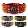 "2"" Medium Large Dog Collars Cool Skull Spiked Studded Leather for Pit Bull Boxer"