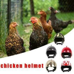 New Helmet Small Pet Hard Shell Headgear Head Protective Chicken Hat Safety L3H1