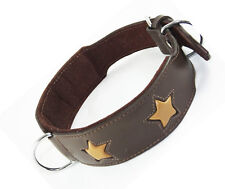 12-16 Inch Brown Tan Stars Staffy Bull Terrier Labrador Leather Dog Collar