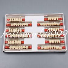 3 Set of 84 Denture Dental Acrylic Resin Teeth VITA Color A2 Upper+Lower Shade