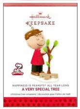 2013 Hallmark Peanuts All Year Charlie Brown Very Special Tree November Ornament