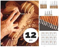 12 Set Carbon Steel Wood Carving Tools Knife Kit Beginners SK2 Hand Chisel Tool