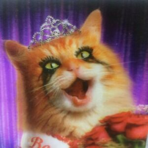 Framed Beauty Queen Kitty Cat Crown Roses Smeared Mascara 3D Picture 9 x 7 Frame
