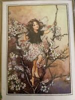 Vintage Cross Stitch Kit Cicely Mary Barker The Blackthorn Fairy Hg14