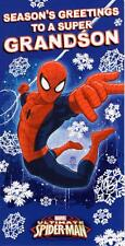 Grandson Spiderman Christmas Money Wallet Gift Card Moneyholder Cards